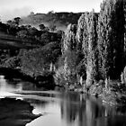 B&W of Murrumbidgee River by Rinaldo Di Battista