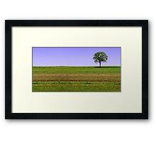 Arboreal Solitude Framed Print
