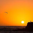 La Palma sunset by Aleksandra Misic