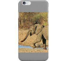 Elephant - Run of Youth - African Wildlife Background  iPhone Case/Skin