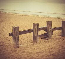 Sand Fence by Errne