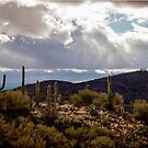 View From Colossal Cave by Linda Gregory
