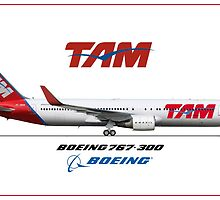 Airlines Collection Boeing 767-300 TAM by wilsoncara