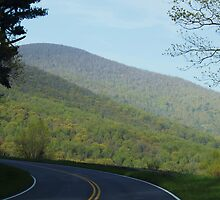 Shenandoah National Park at Spring time by ANNABEL   S. ALENTON