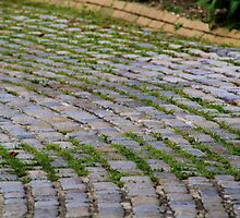 Cobblestone Road at the Vanderbilt Estate by Gilda Axelrod