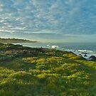 Pacific Coast Sunrise - Cambria, California by Mike Capone