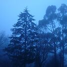 Blue Winter by Leviathan