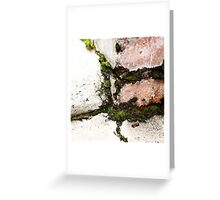 { Corners: where the walls meet #12 } Greeting Card