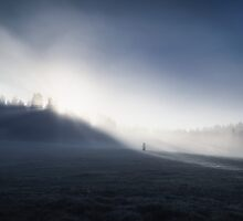 Alone in the Light by Mikko Lagerstedt