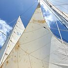 all sails out by globeboater