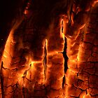 Burning Wood by Sascha Grant