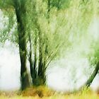 Artscape...........Willow Tree on the Rhine by Imi Koetz