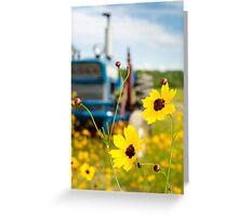 Field of Flowers II Greeting Card