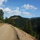 Old Gold Camp Road, Colorado Springs, Colorado (USA) by Lori Peters