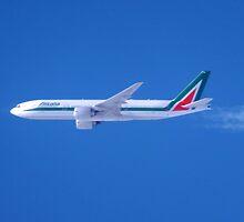 Flying High by Karen  Rubeiz