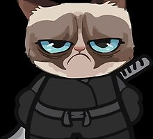 Grumpy Ninja Cat by MPeterson33