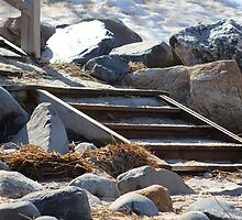 Snowy Beach Steps by Gilda Axelrod