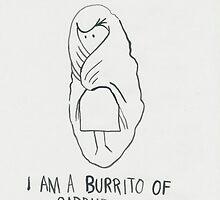 burrito by husnik77