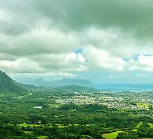 Windward Oahu by Leigh Anne Meeks