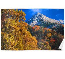 THE CHIMNEY TOPS,AUTUMN SNOW Poster
