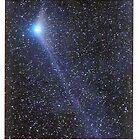 """Hale-Bopp, in the Star Filled Night by David M Scott"