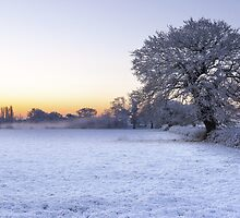 Winter Mist by JLHphoto