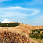 Tuscany View by ASchachinger