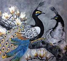 Peacock date in a magnolia tree by Rosalind Clarke