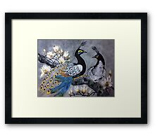 Peacock date in a magnolia tree Framed Print