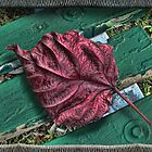 Leaf on a Bench by GolemAura