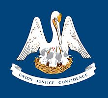Louisiana State Flag by Carolina Swagger