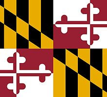 Maryland State Flag by carolinaswagger