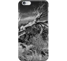 Dead Fall iPhone Case/Skin