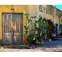 Elysian Grove Market II Photographic Print