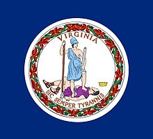 Virginia State Flag by Carolina Swagger