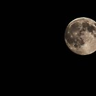 First super moon of 2014 by missmoneypenny