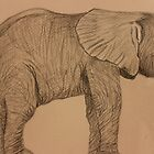 Baby Elephant by aprilann