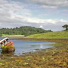 Abandoned boat in the Loch  by Rob Hawkins