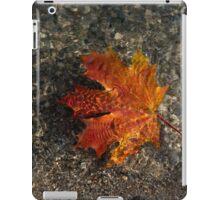 Maple Leaf - Playful Sunlight Patterns iPad Case/Skin