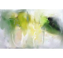 Juniper Brush Photographic Print