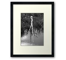 Partially submerged tree Framed Print
