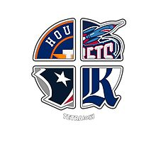 Houston Texas Pro Sports TETRAlogy! Astros, Rockets, Texans and Rice University by SplitDecision