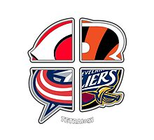 Ohio Pro Sports TETRAlogy! Cincinnati Bengals, Cincinnati Reds, Cavaliers and Columbus Blue Jackets by SplitDecision
