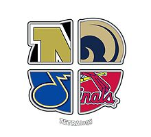 Saint Louis Missouri Pro Sports TETRAlogy! Rams, Cardinals, Blues and University of Missouri Tigers by SplitDecision