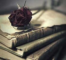 Still life with books and dry red rose by JBlaminsky