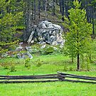 Jack Fence and Rock by Bryan D. Spellman