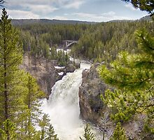 Yellowstone Falls - Upper by yellocoyote
