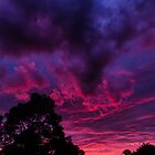Warrandyte Sunset VIII by Adam Le Good