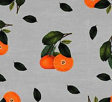 oranges by beverlylefevre