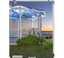 Squid's Ink Rotunda iPad Case/Skin